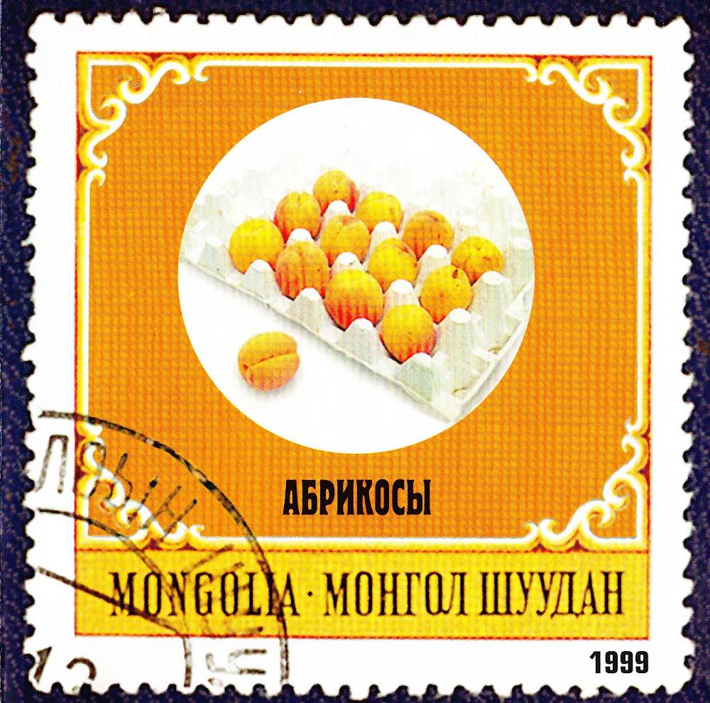 Монгол Шуудан — Абрикосы (1999)